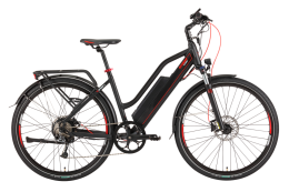 Ecobike Speed L